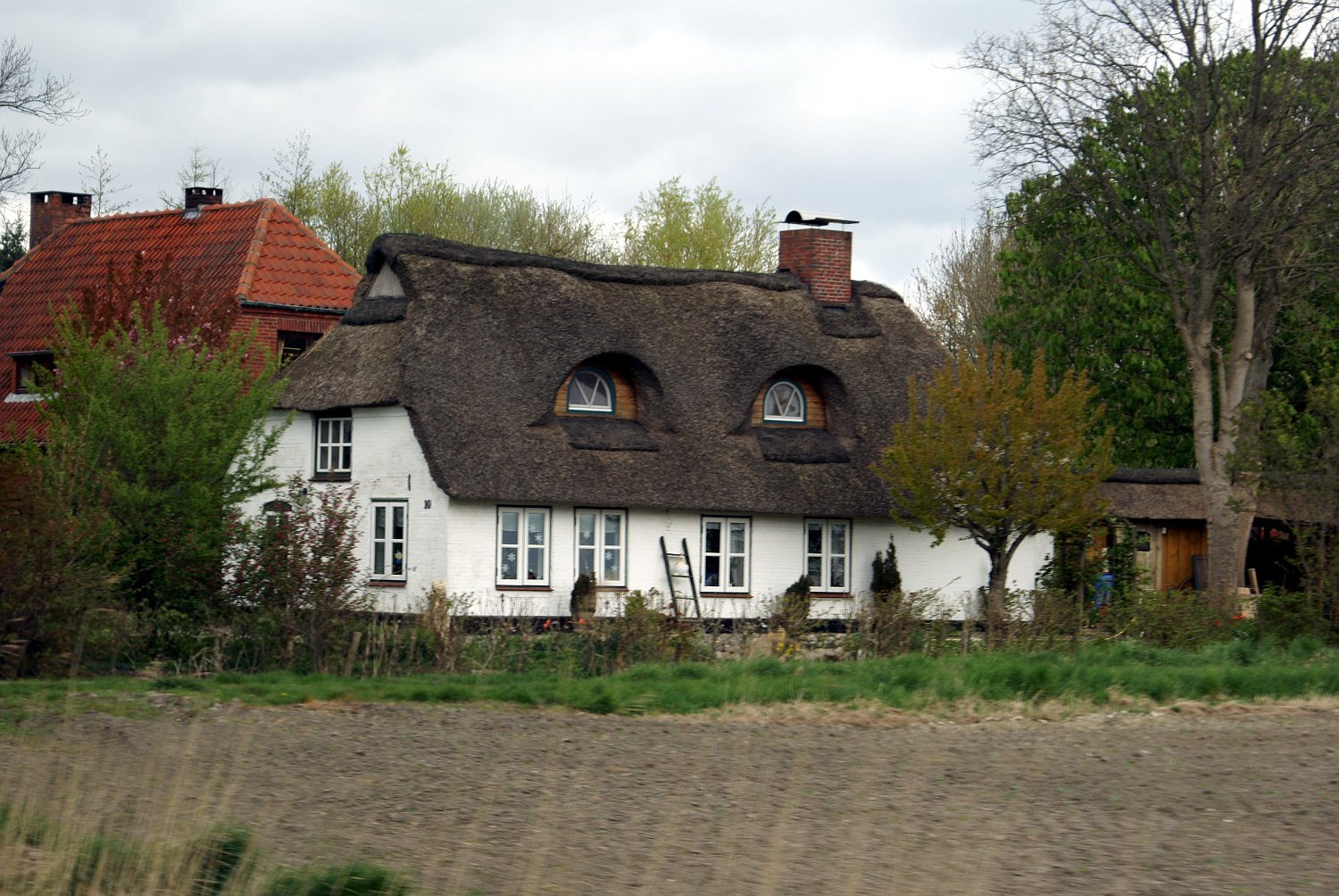 Things You Should Know About Owning a Thatched Roof Home